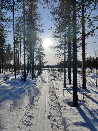 Aurinkoinen Kylävaaran 10 km latu